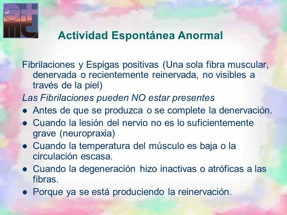 Actividad Espontánea Anormal