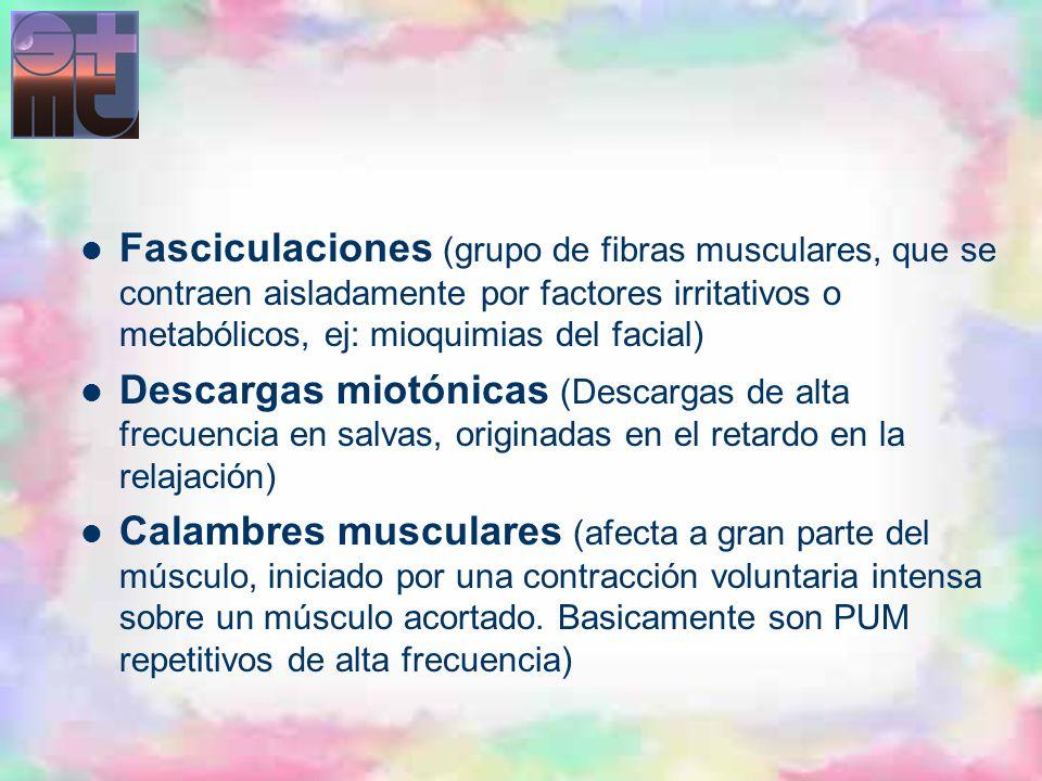 Fasciculaciones (grupo de fibras musculares, que se contraen aisladamente por factores irritativos o metabólicos, ej: mioquimias del facial)