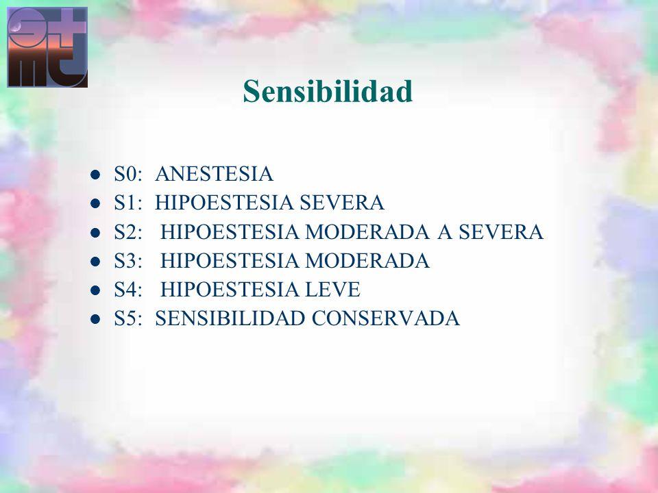 Sensibilidad S0: ANESTESIA S1: HIPOESTESIA SEVERA