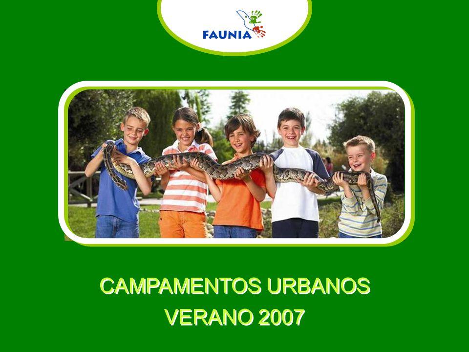 CAMPAMENTOS URBANOS VERANO 2007