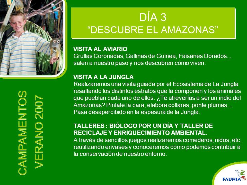 DÍA 3 DESCUBRE EL AMAZONAS