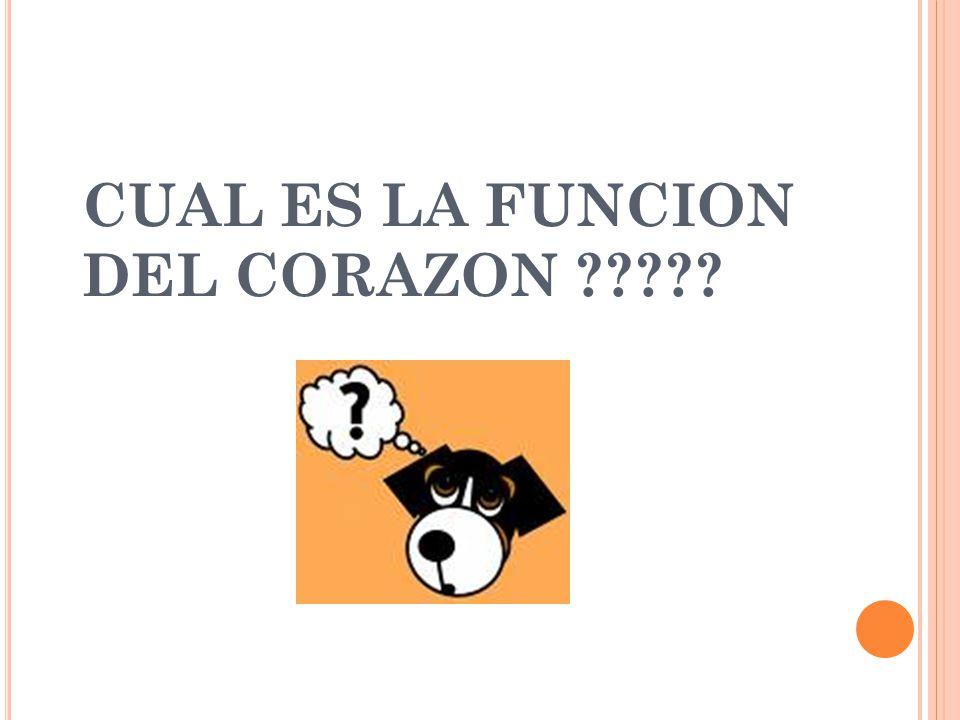 CUAL ES LA FUNCION DEL CORAZON