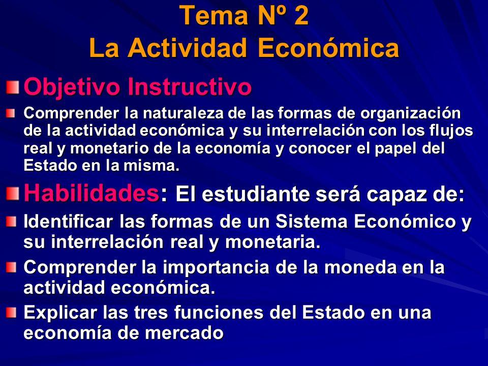 Tema Nº 2 La Actividad Económica