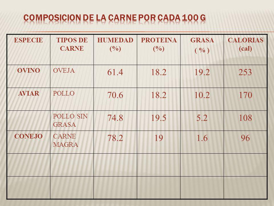 COMPOSICION DE LA CARNE POR CADA 100 g