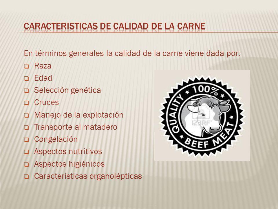 CARACTERISTICAS DE CALIDAD DE LA CARNE