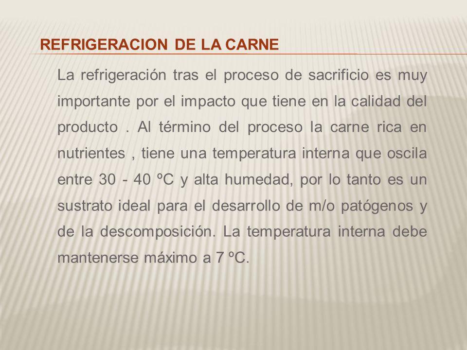 REFRIGERACION DE LA CARNE La refrigeración tras el proceso de sacrificio es muy importante por el impacto que tiene en la calidad del producto .