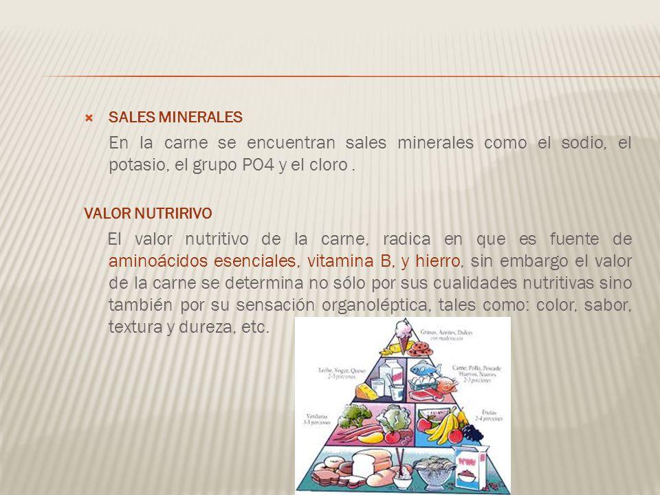 SALES MINERALES En la carne se encuentran sales minerales como el sodio, el potasio, el grupo PO4 y el cloro .
