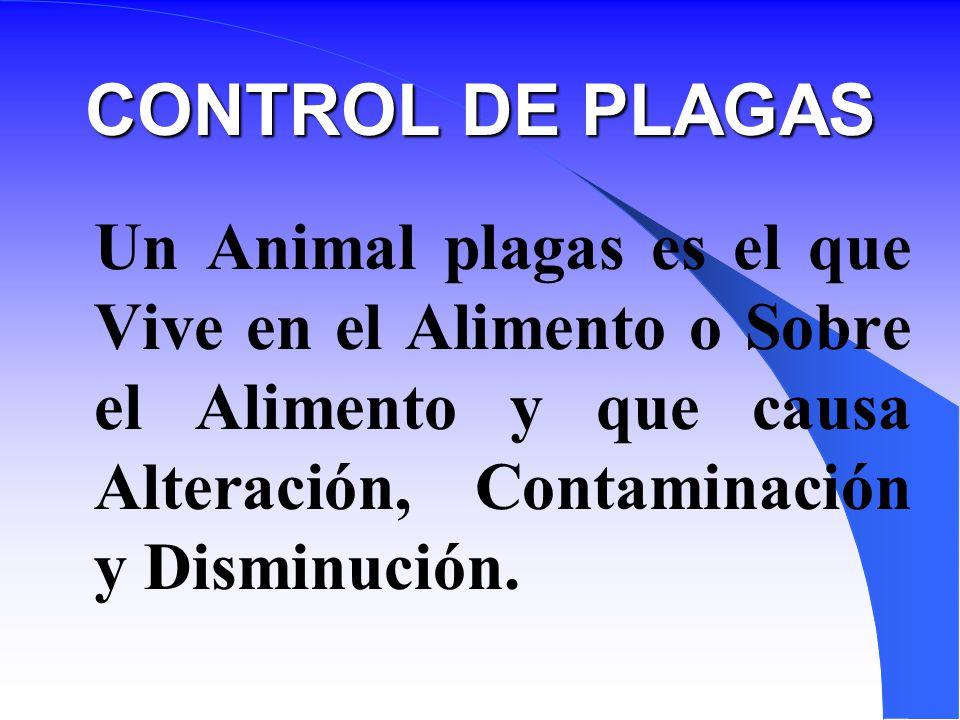 CONTROL DE PLAGAS Un Animal plagas es el que Vive en el Alimento o Sobre el Alimento y que causa Alteración, Contaminación y Disminución.