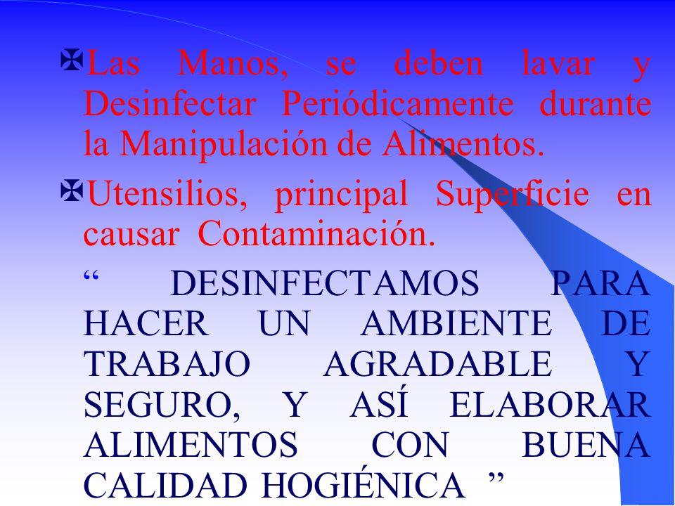 Las Manos, se deben lavar y Desinfectar Periódicamente durante la Manipulación de Alimentos.