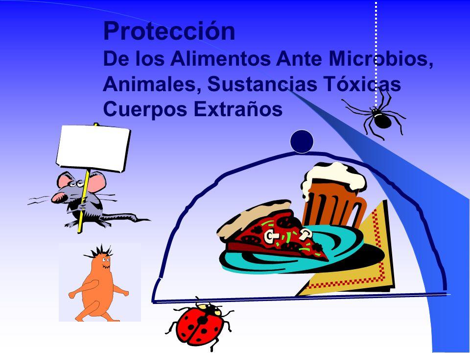 Protección De los Alimentos Ante Microbios,