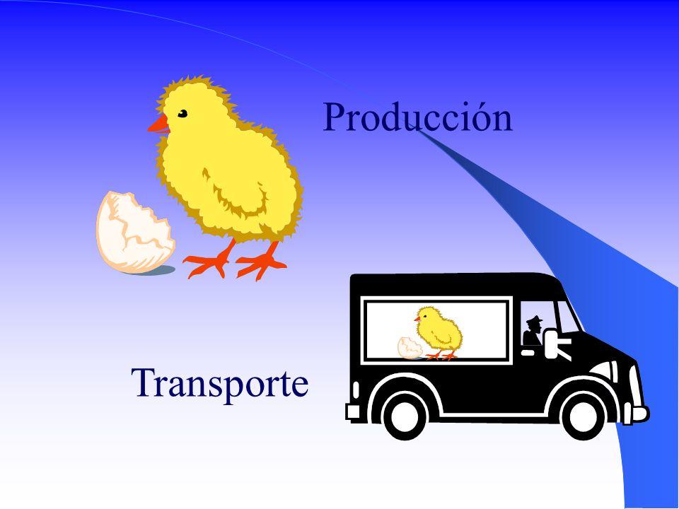 Producción Transporte