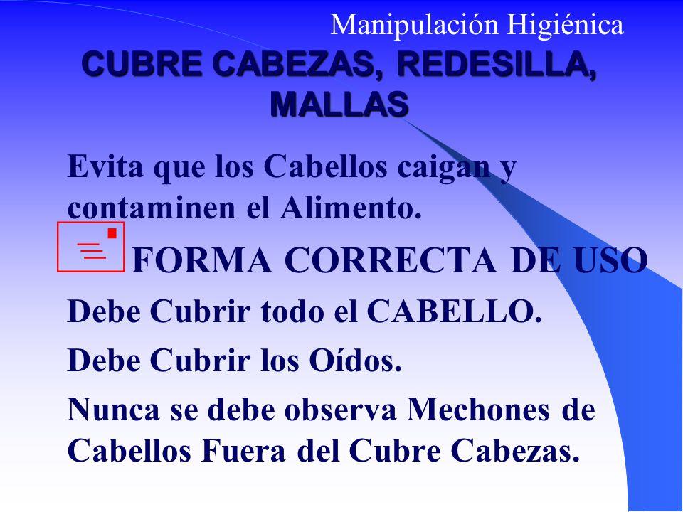 CUBRE CABEZAS, REDESILLA, MALLAS