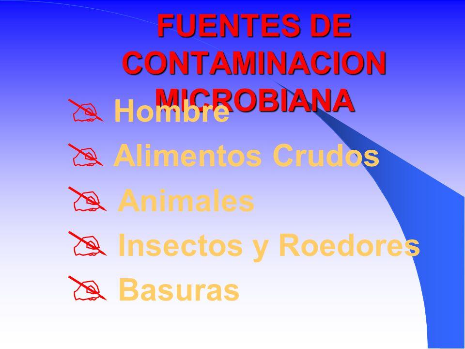 Curso de higiene para manipuladores de alimentos ppt descargar - Fuentes de contaminacion de los alimentos ...