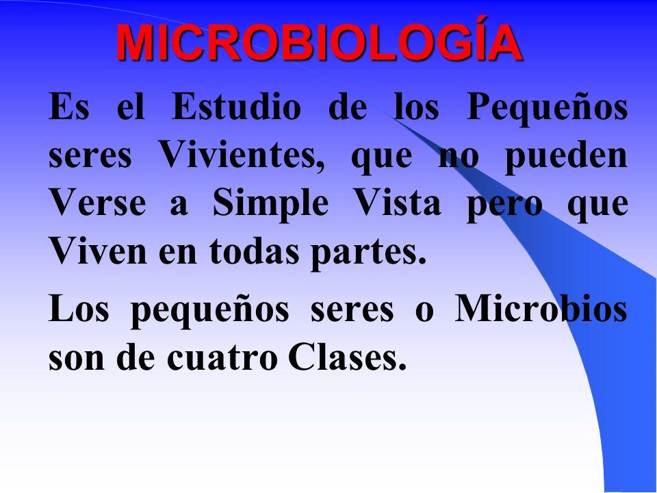 MICROBIOLOGÍA Es el Estudio de los Pequeños seres Vivientes, que no pueden Verse a Simple Vista pero que Viven en todas partes.