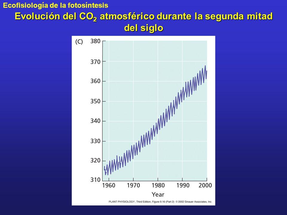 Evolución del CO2 atmosférico durante la segunda mitad del siglo