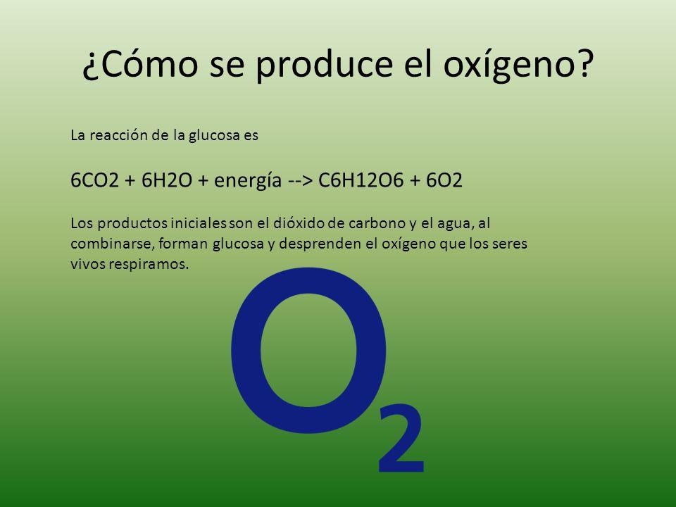 ¿Cómo se produce el oxígeno