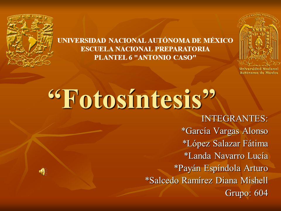 Fotosíntesis INTEGRANTES: *García Vargas Alonso
