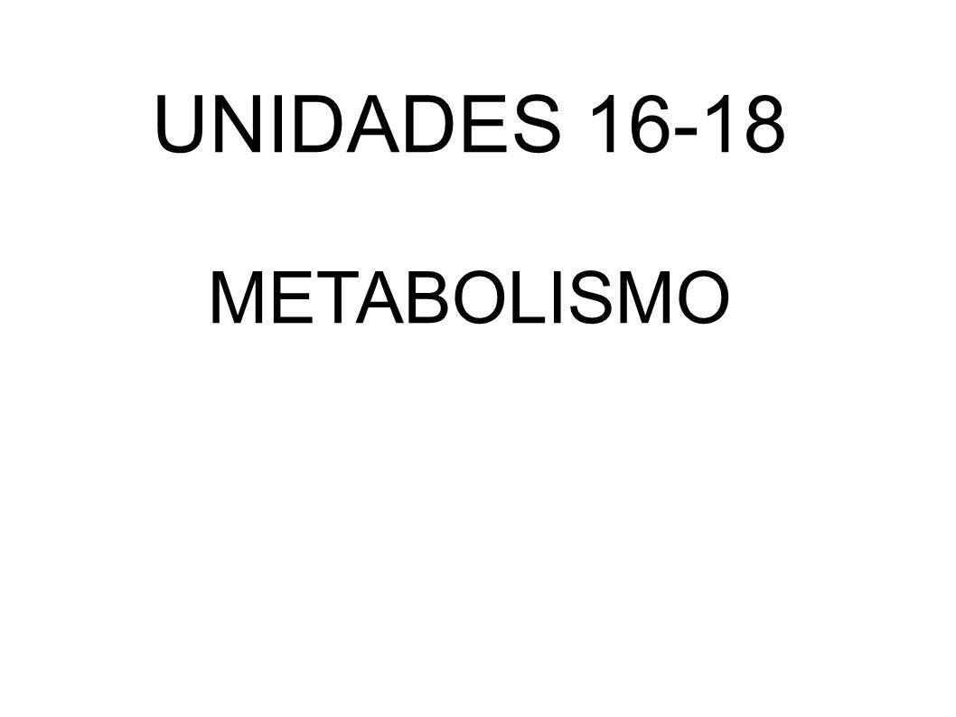 UNIDADES 16-18 METABOLISMO