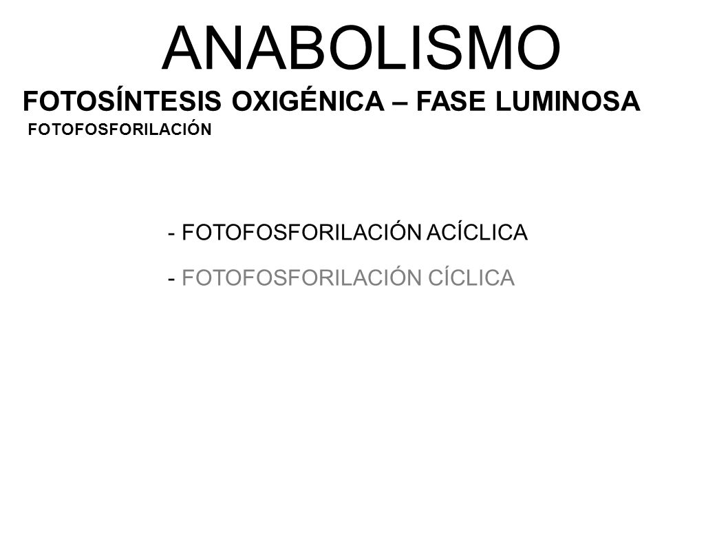 ANABOLISMO FOTOSÍNTESIS OXIGÉNICA – FASE LUMINOSA