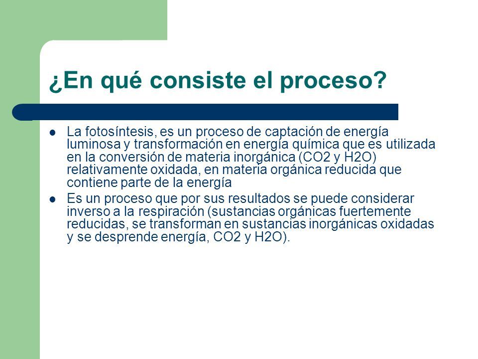 ¿En qué consiste el proceso