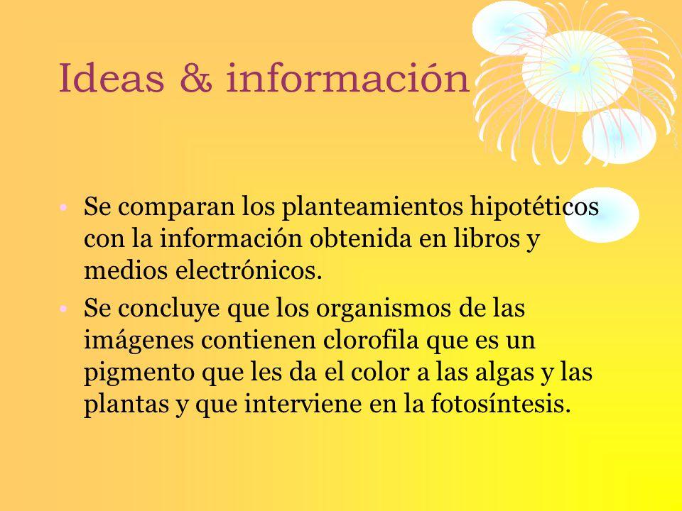 Ideas & información Se comparan los planteamientos hipotéticos con la información obtenida en libros y medios electrónicos.
