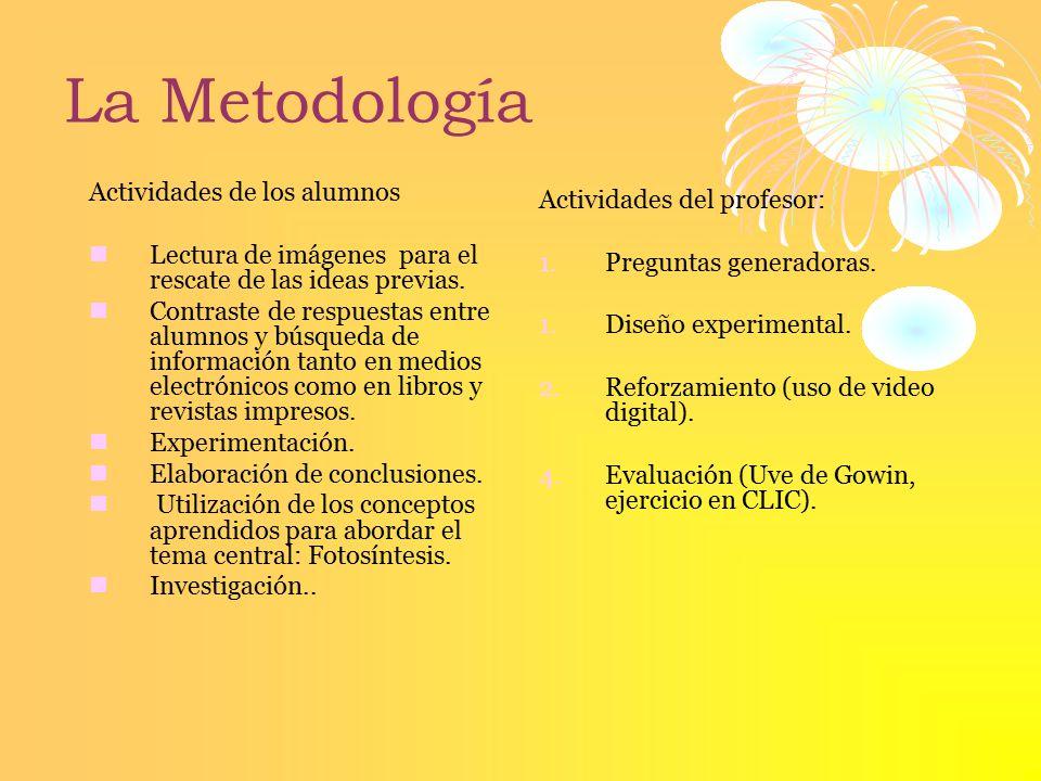 La Metodología Actividades del profesor: Actividades de los alumnos