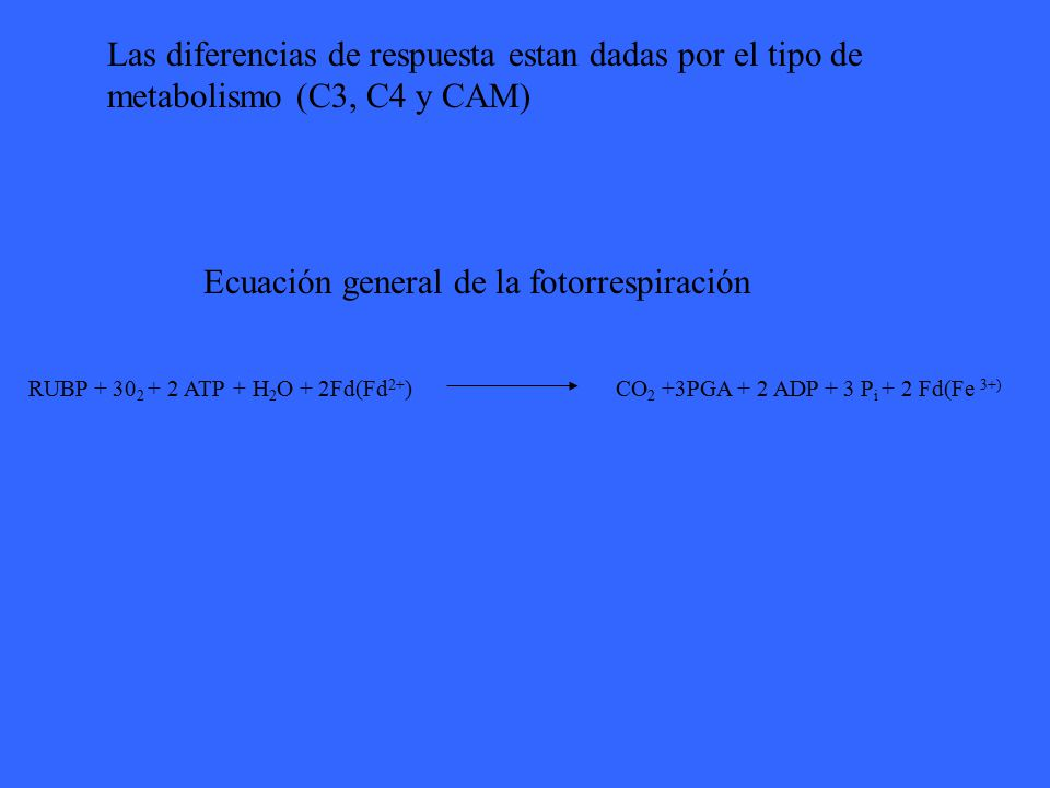 Ecuación general de la fotorrespiración