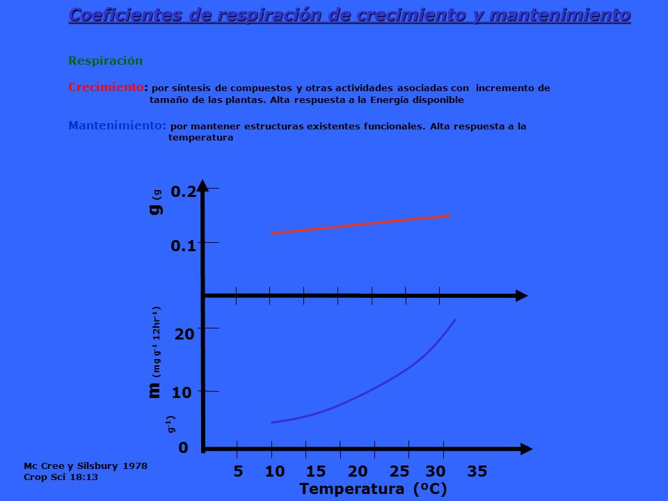 20 10 Coeficientes de respiración de crecimiento y mantenimiento