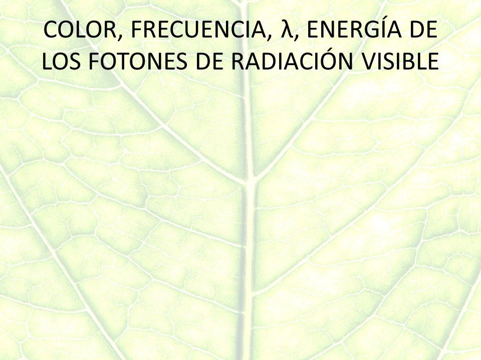 COLOR, FRECUENCIA, λ, ENERGÍA DE LOS FOTONES DE RADIACIÓN VISIBLE
