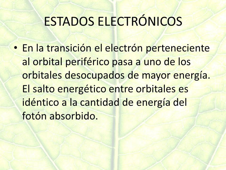 ESTADOS ELECTRÓNICOS