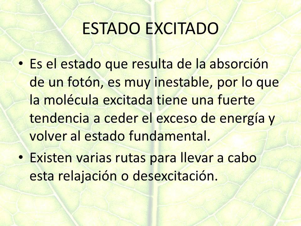 ESTADO EXCITADO