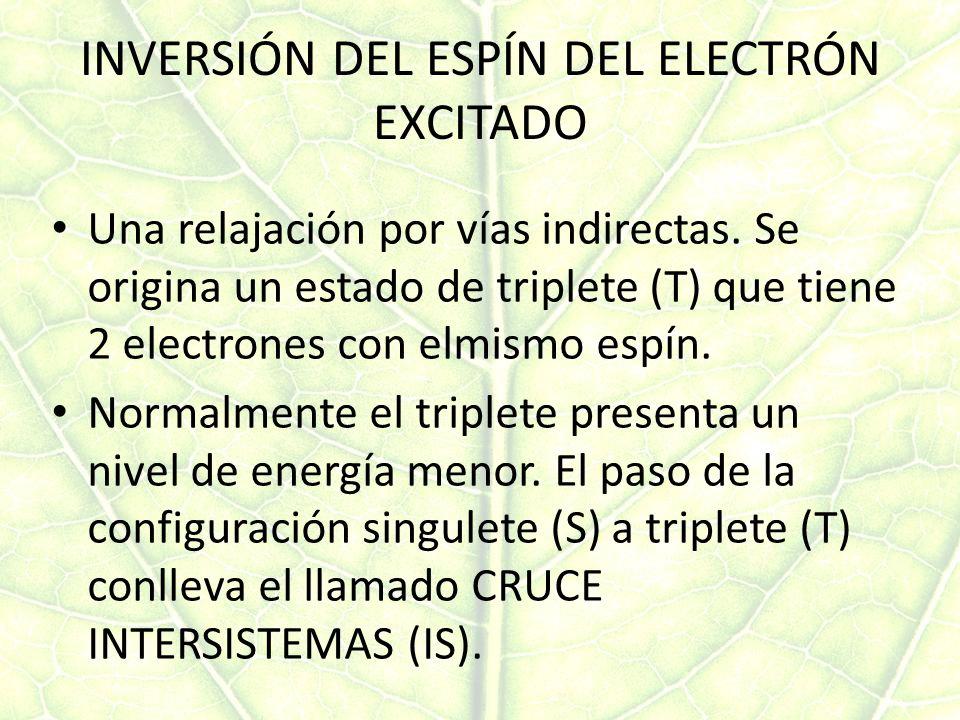 INVERSIÓN DEL ESPÍN DEL ELECTRÓN EXCITADO