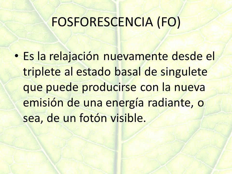 FOSFORESCENCIA (FO)