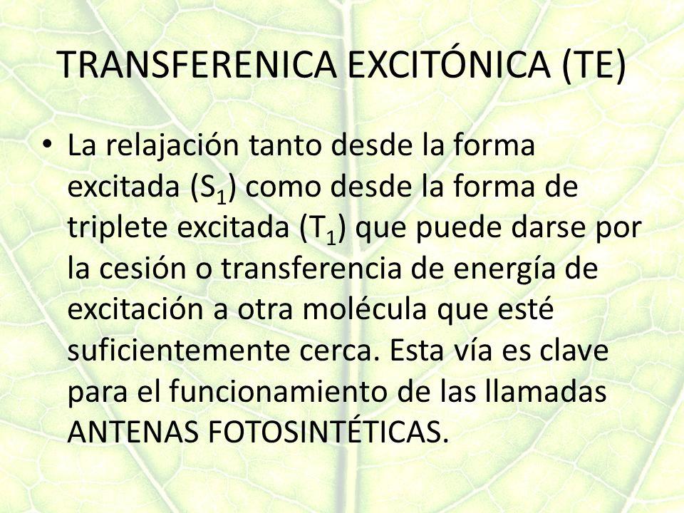 TRANSFERENICA EXCITÓNICA (TE)