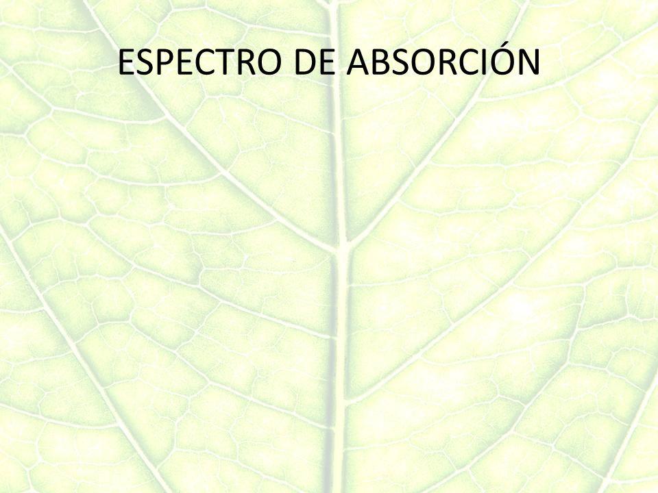 ESPECTRO DE ABSORCIÓN