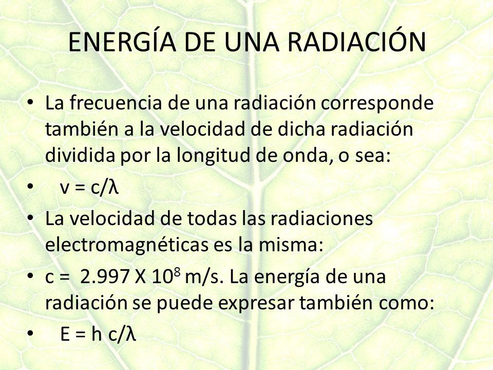 ENERGÍA DE UNA RADIACIÓN