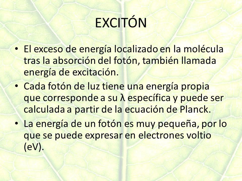 EXCITÓN El exceso de energía localizado en la molécula tras la absorción del fotón, también llamada energía de excitación.