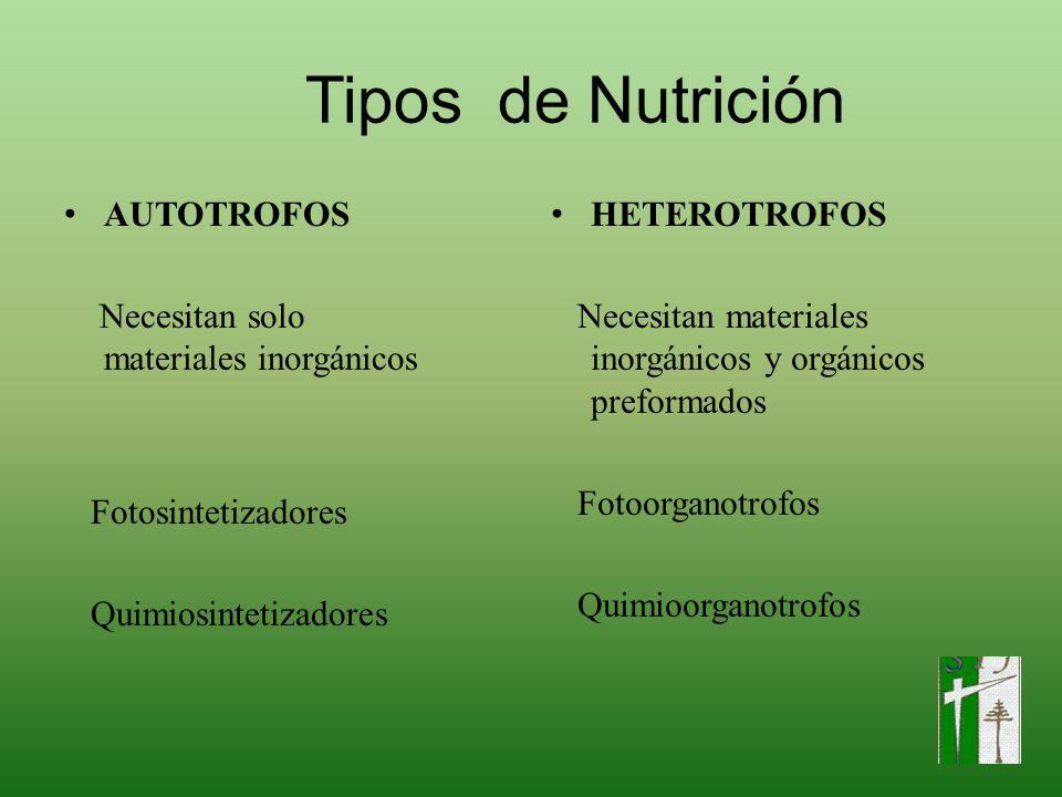 Tipos de Nutrición AUTOTROFOS Necesitan solo materiales inorgánicos
