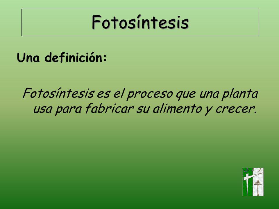 Fotosíntesis Una definición: