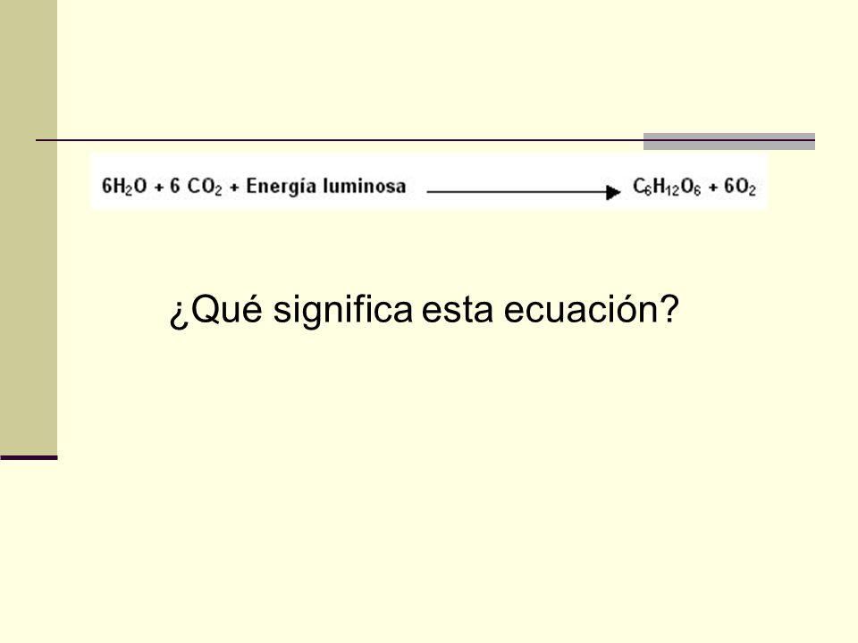 ¿Qué significa esta ecuación