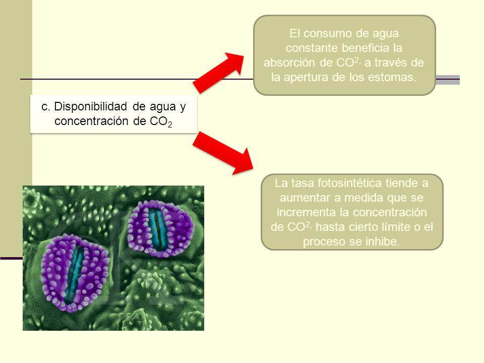 c. Disponibilidad de agua y concentración de CO2