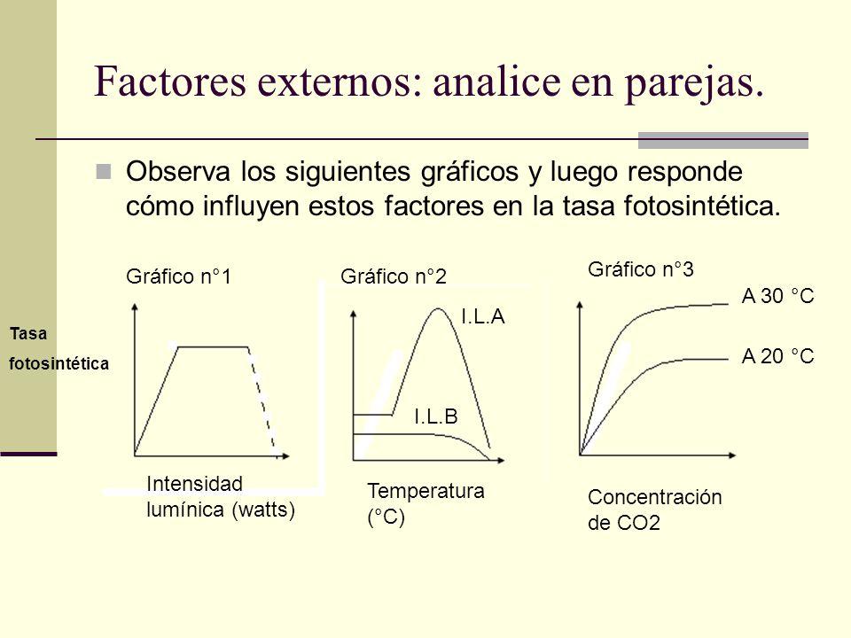 Factores externos: analice en parejas.