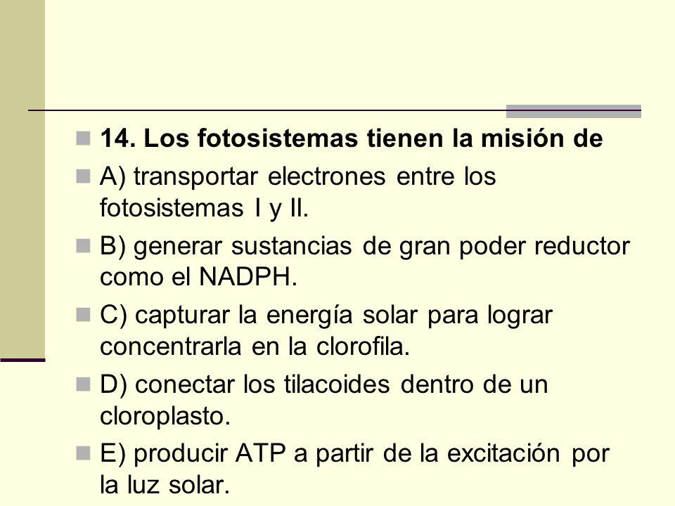 14. Los fotosistemas tienen la misión de