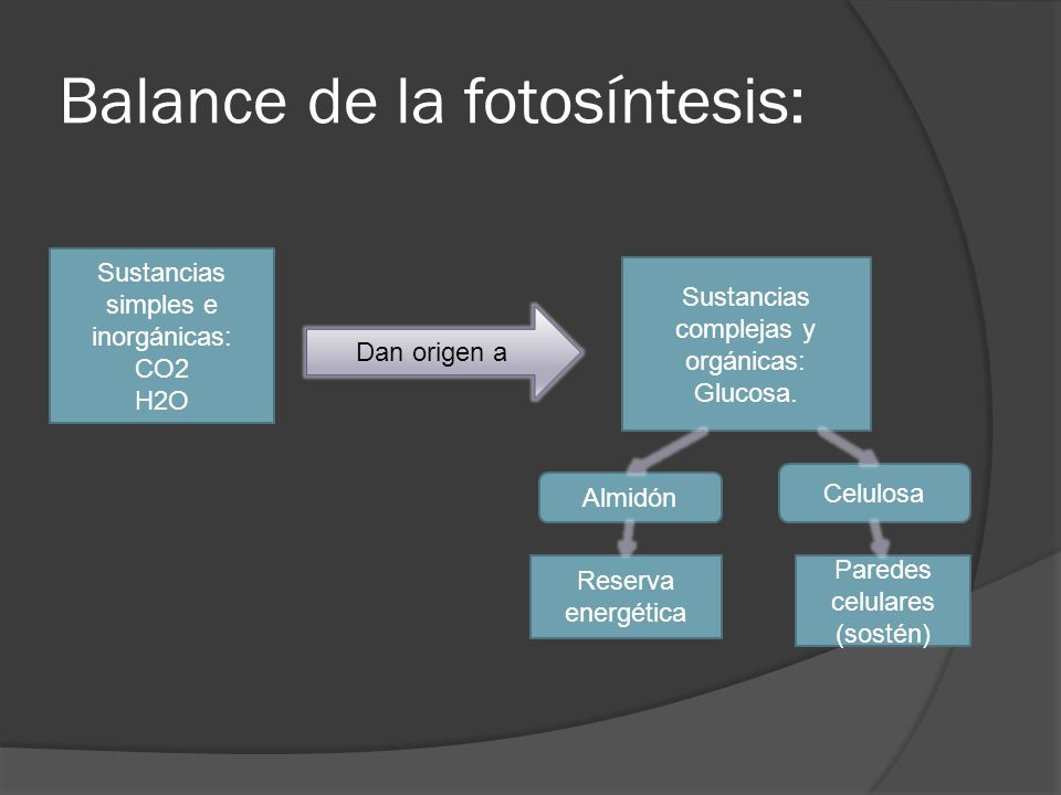 Balance de la fotosíntesis: