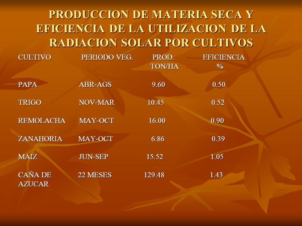 PRODUCCION DE MATERIA SECA Y EFICIENCIA DE LA UTILIZACION DE LA RADIACION SOLAR POR CULTIVOS