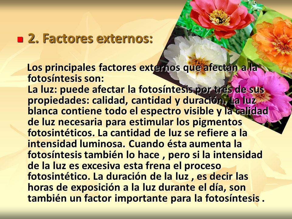 2. Factores externos: