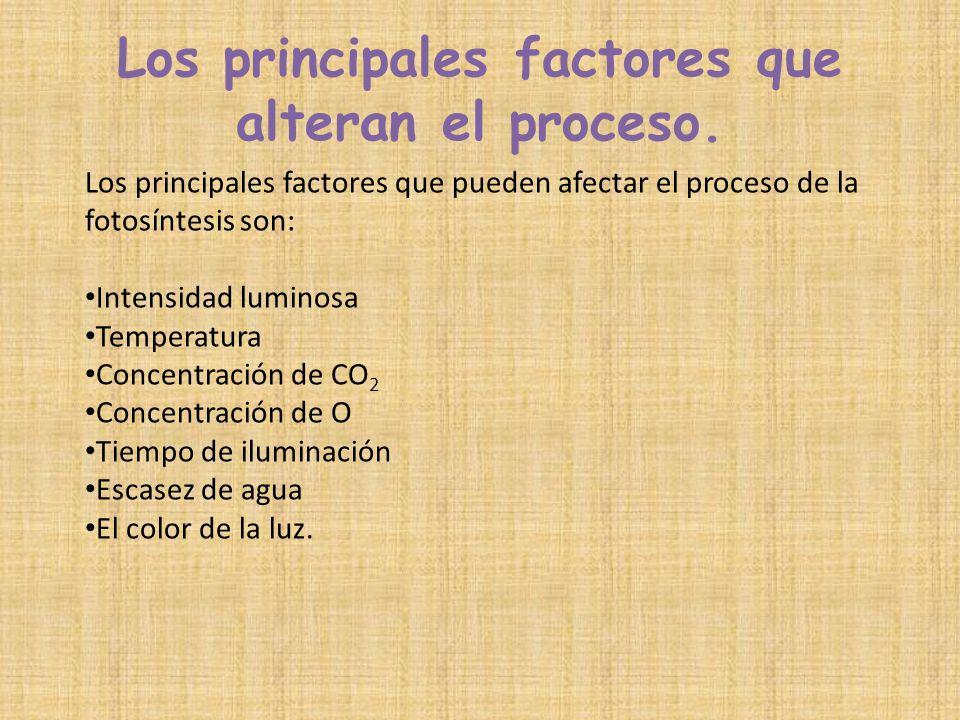 Los principales factores que alteran el proceso.