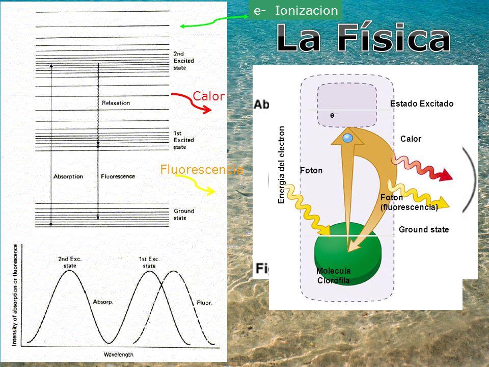 La Física e- Ionizacion Calor Fluorescencia Estado Excitado e– Calor