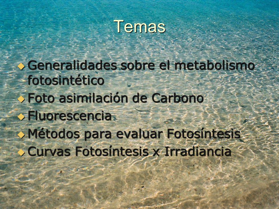 Temas Generalidades sobre el metabolismo fotosintético