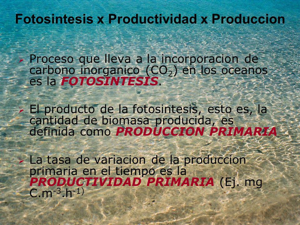 Fotosintesis x Productividad x Produccion